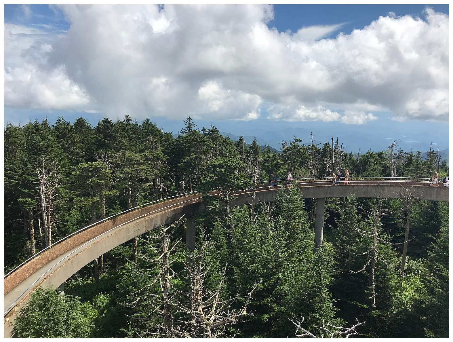 Walkway view. At 6,643 feet, Clingmans Dome is the highest point in the Great Smoky Mountains National Park.